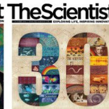 <em>The Scientist</em>'s Year in Review