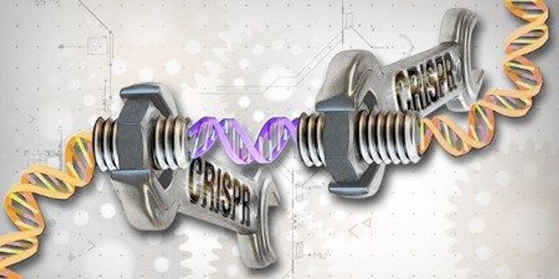 Self-Editing Genetic Barcodes