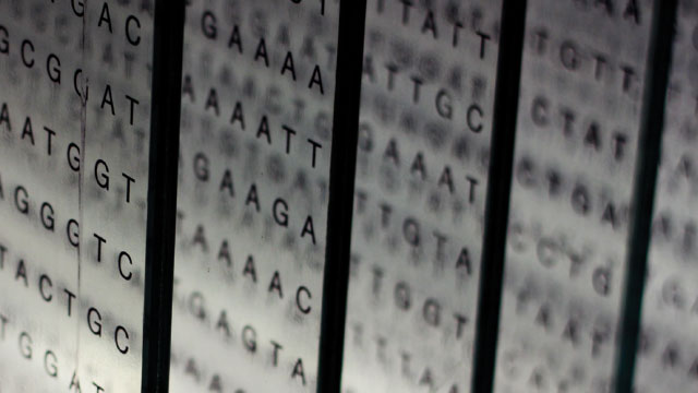 Opinion Not All Genetic Databases Are Equal The Scientist