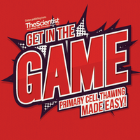 Get in the Game: Primary Cell Thawing Made Easy