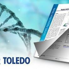 Nucleic Acid Concentration and Purity