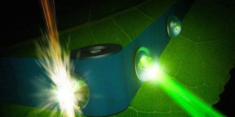 Atomic-Scale 3-D Images Help Unravel the Mysteries Of Photosynthesis