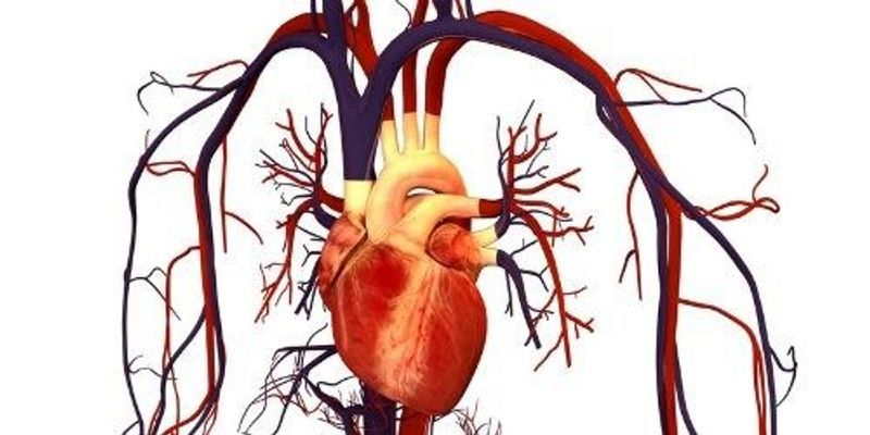 """Genotyping """"Surrogates"""" Misdiagnoses Deadly Heart Condition"""