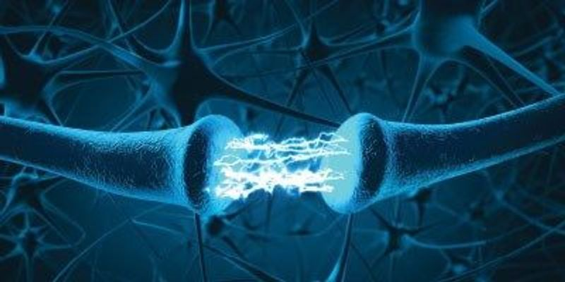 Neurometabolic Disorders Could Contribute to Depression