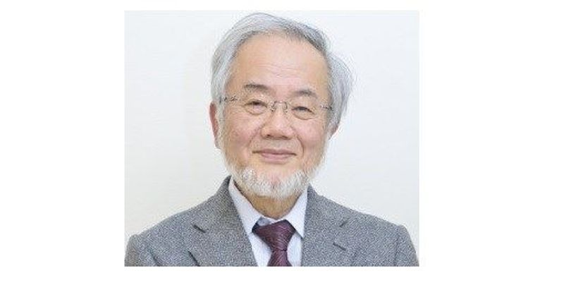 Autophagy Pioneer Wins Nobel
