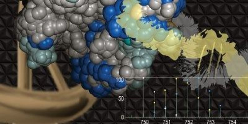 Mass Spec Analysis of Protein Interactions