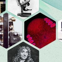 Microscopy's Growth Through the Years