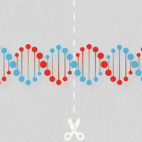 Genome Editing with CRISPR/Cas9