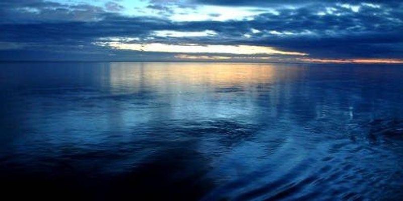 Ocean Viruses Cataloged