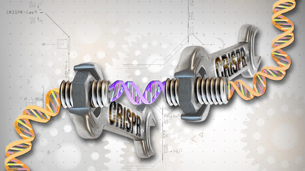 CRISPR Therapeutics floats a $90 million IPO.