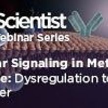 Cellular Signaling in Metabolic Disease – Dysregulation to Disorder