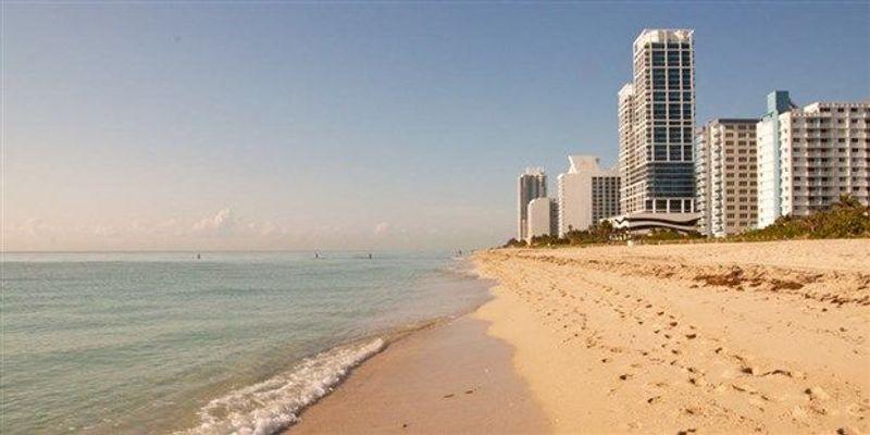 CDC: Zika Virus Spreading in Miami Beach