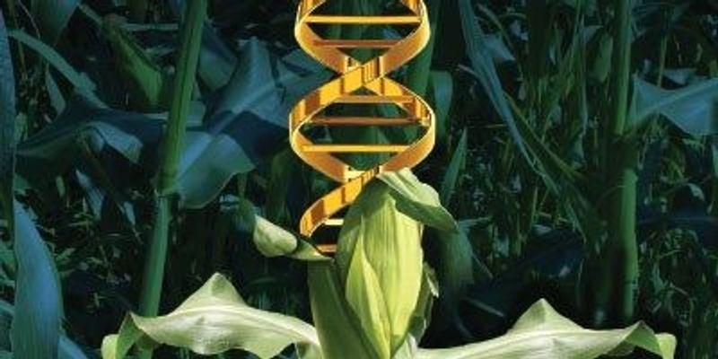 The Growth of Iowa Biotech