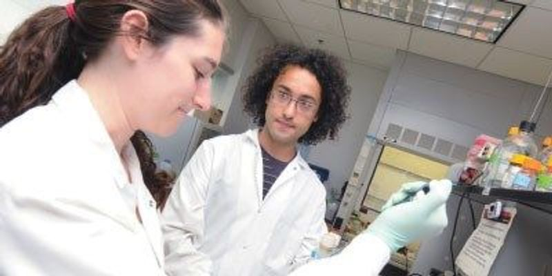 New Lyme Disease Test Developed by Summer Student