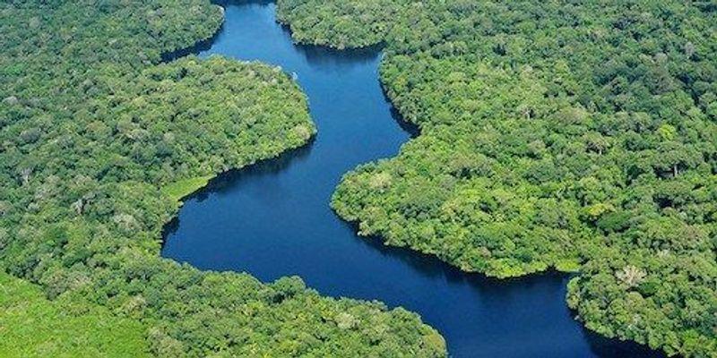 """Report: Biodiversity Has Fallen Below """"Safe"""" Levels"""