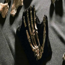 New Timeline for <em>Homo naledi</em>