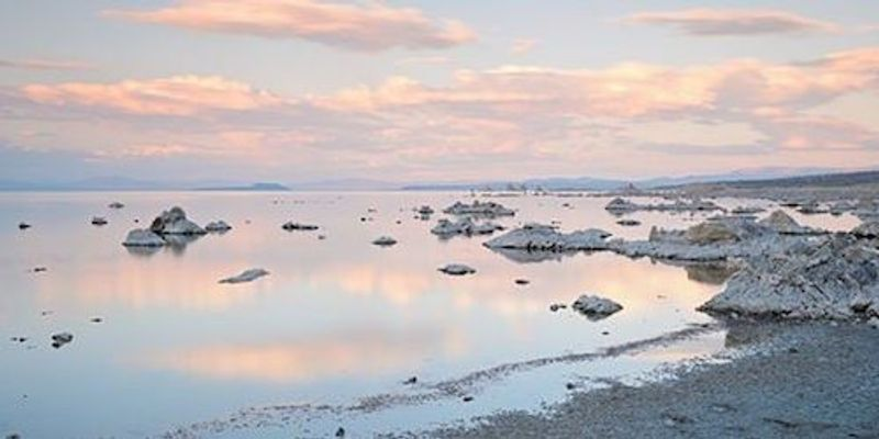 Microbes Persist in Super-Salty Conditions