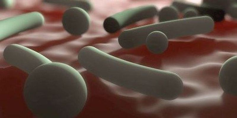 Early-Life Microbiome