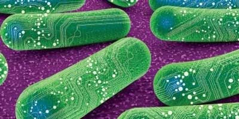 Synthetic Biology Comes into Its Own