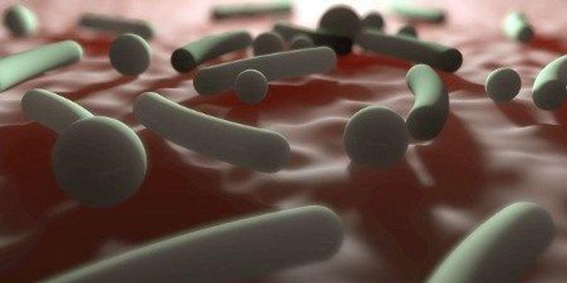 Broad-Spectrum Antibiotics Can Increase GVHD Severity in Stem Cell Recipients