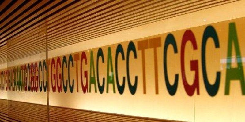 Genetic Connections Among Human Traits