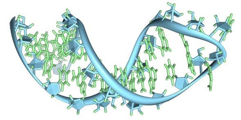 Further Evidence that Life Might Have Started with RNA