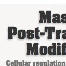 Mastering Post-Translational Modifications