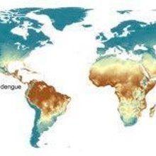 Mapping Worldwide Zika Susceptibility