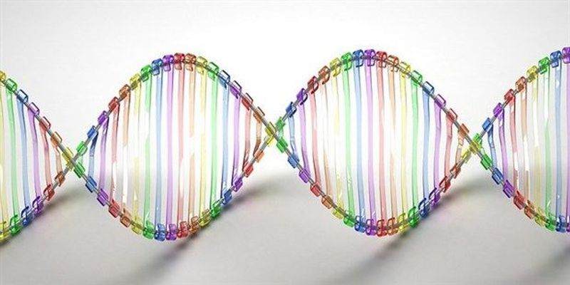 Biological Programming