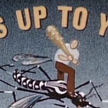 Mosquito Control, 1945