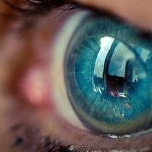 Contacts May Affect Eye Microbiome