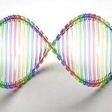 Study: Genetic Tests Don't Change Behavior
