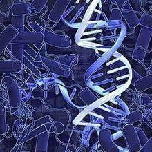 CRISPRi-Controlled Gene Expression