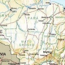 Brazil's Pre-Zika Microcephaly Cases