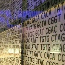 Disease-Linked Genes Questioned