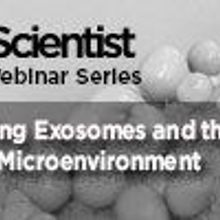Exploring Exosomes and the Tumor Microenvironment