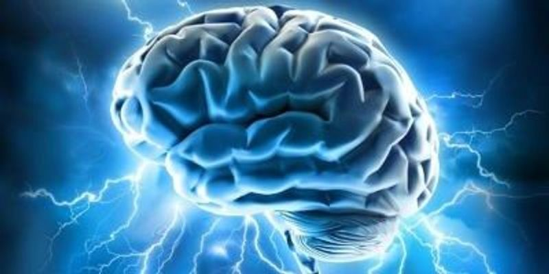 European Brain Project Extended