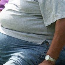 Allele Linked to Obesity in People