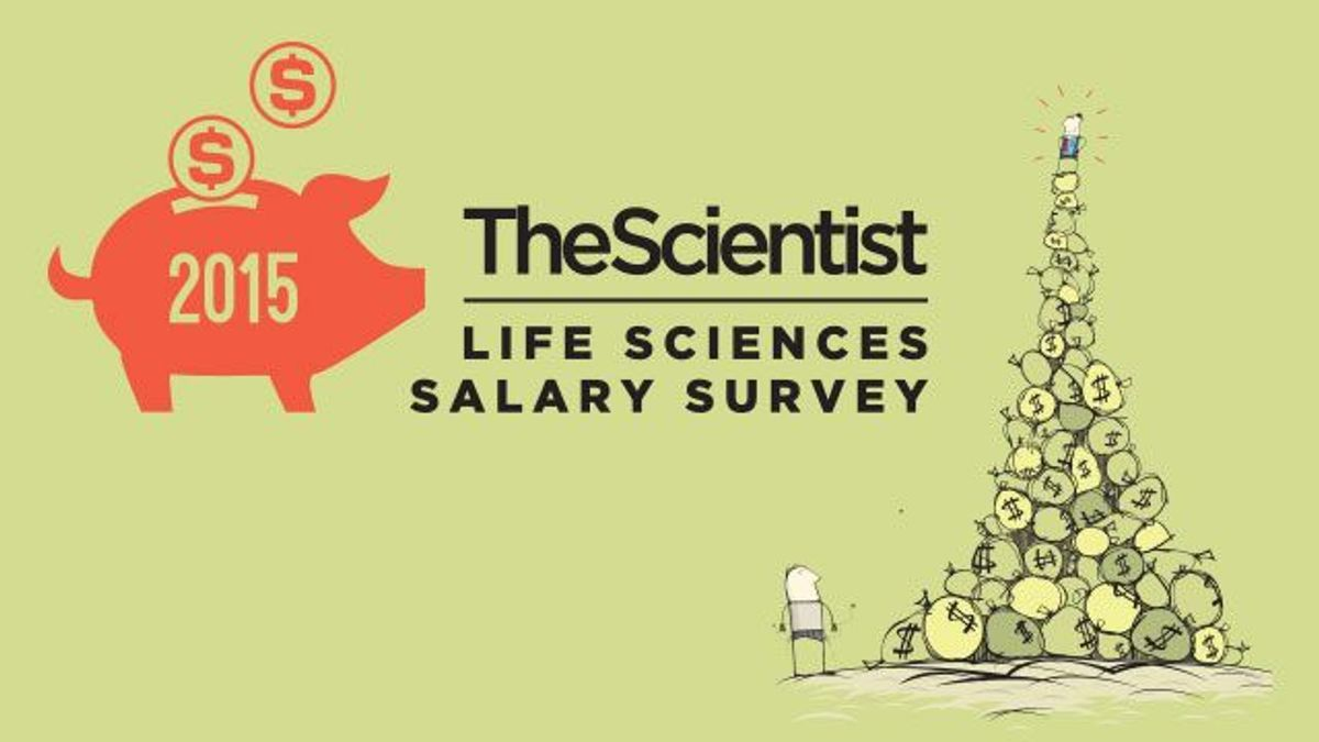 2015 Life Sciences Salary Survey | The Scientist Magazine®
