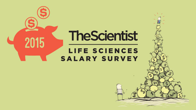 2015 Life Sciences Salary Survey The Scientist Magazine