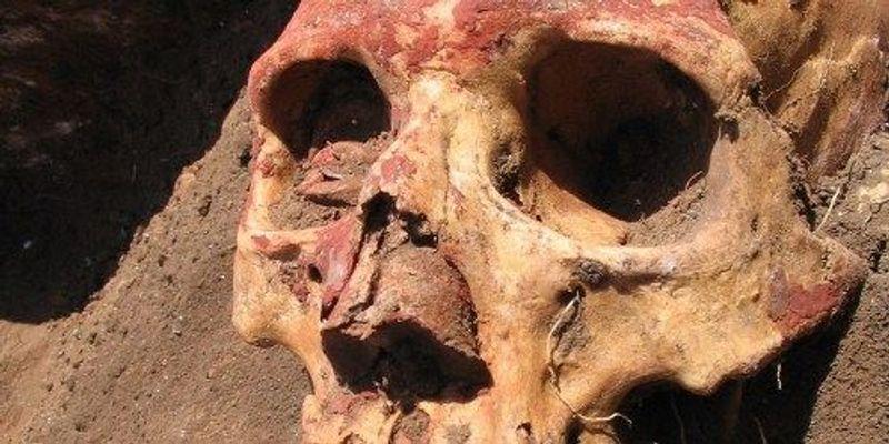 Bronze Age Plague Sequenced