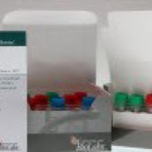 NEBNext® Ultra™ II DNA Library Prep Kit for Illumina®