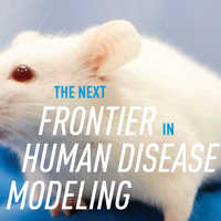 The Next Frontier in Disease Modeling