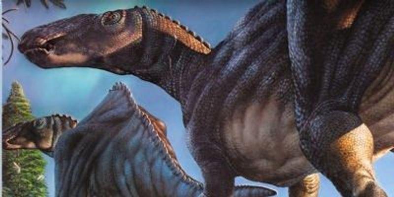 Polar Dino Discovered