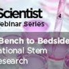 From Bench to Bedside: Translational Stem Cell Research