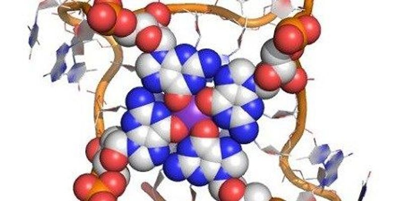Characterizing DNA Quadruplexes