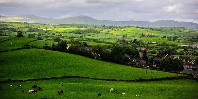 Scientists Oppose Scotland's GM Crop Ban