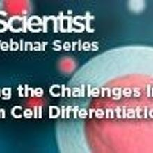 Tackling the Challenges Involved in Stem Cell Differentiation