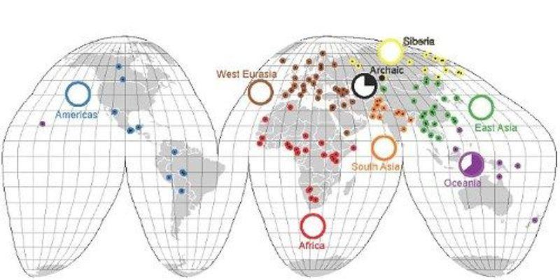 Genomic Elements Reveal Human Diversity