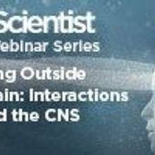 Thinking Outside the Brain: Interactions Beyond the CNS